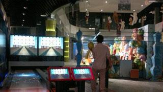 SWII数维模拟保龄球(标准版)
